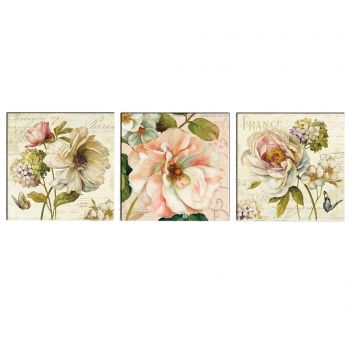 Set 3 tablouri Vintage Flowers 30x30 cm
